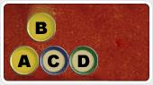 Word Race Online
